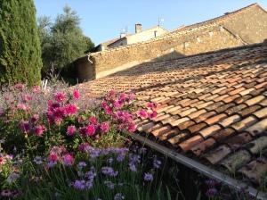 Maison Trigon B&B Languedoc. Foto: Fredrika Hübsch