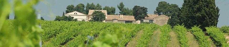 Domaine de Calet ligger i södra Rhône, vid porten till Camargue. Här finns förutsättningar för enastående viner: läge, klimat och jordmån.